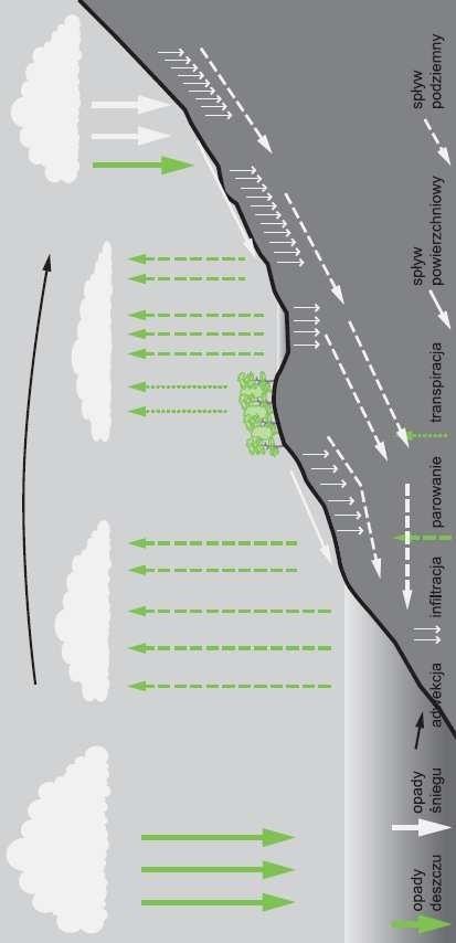 Model cyrkulacji wody w przyrodzie.