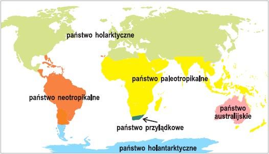 Rozmieszczenie państw roślinnych na Ziemi