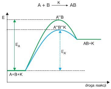 Przebieg reakcji z udziałem katalizatora