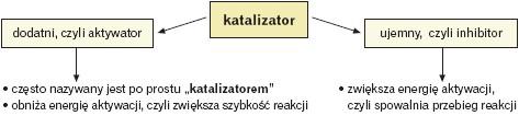 Podział katalizatorów