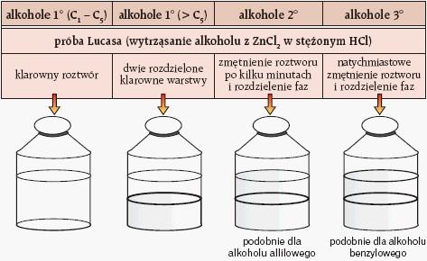 Okreslanie rzędowości alkoholi