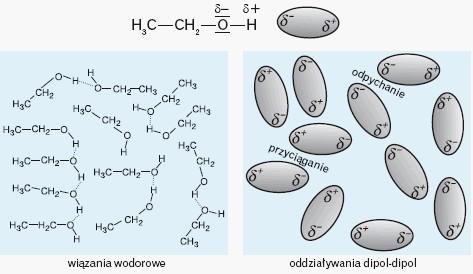 Wiązania wodorowe i dipol-dipol