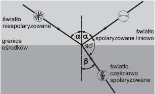 Polaryzator światła