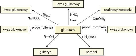 Reakcje w których glukoza jest substratem