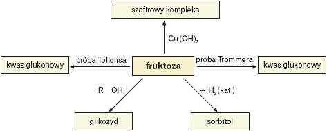 Reakcje w których fruktoza jest substratem