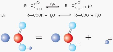 Dysocjacja elektrolityczna z doszczepieniem kationów H+