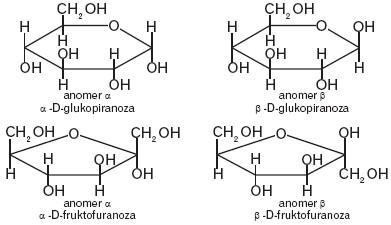 Anomery α i β