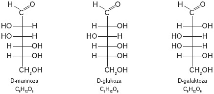 Mannoza, glukoza, galaktoza