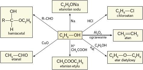 Przemiany chemiczne w których etanol jest substratem